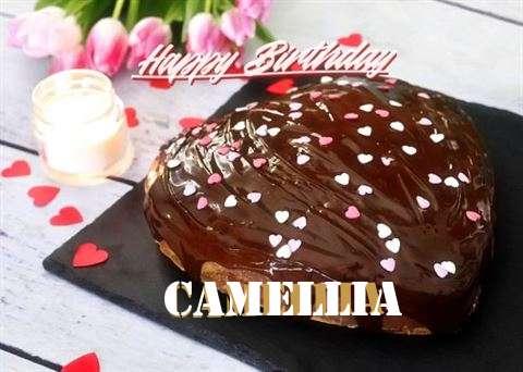 Happy Birthday Cake for Camellia