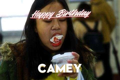 Wish Camey