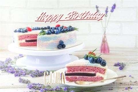 Happy Birthday to You Camia