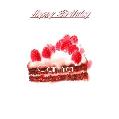 Wish Camia