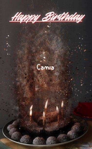Happy Birthday Cake for Camia