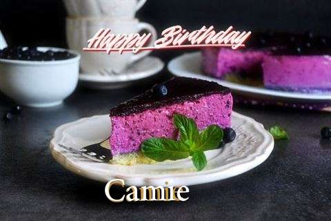 Camie Birthday Celebration