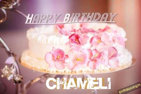 Happy Birthday Wishes for Chameli