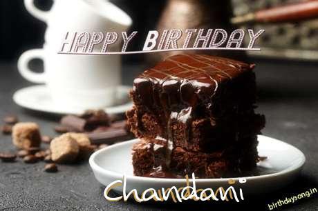 Chandani Birthday Celebration