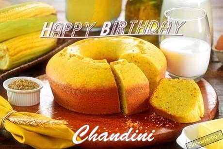 Chandini Birthday Celebration