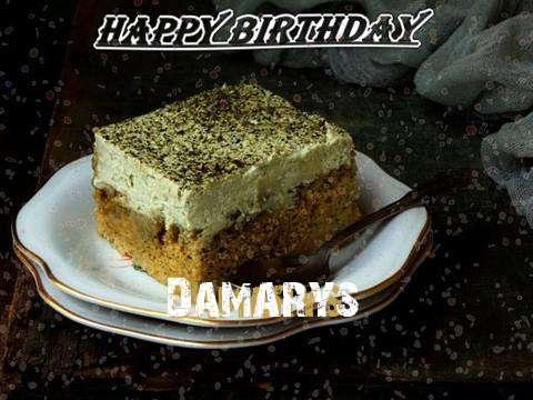 Damarys Birthday Celebration