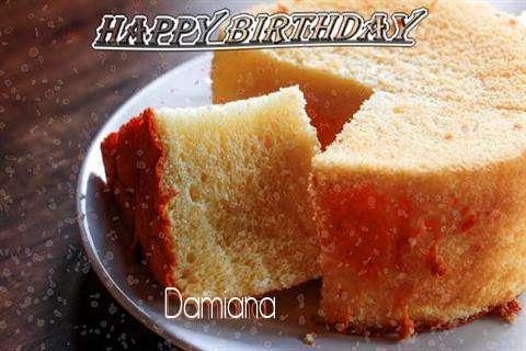 Damiana Birthday Celebration