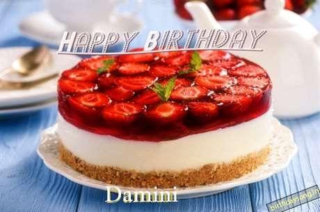 Damini Birthday Celebration