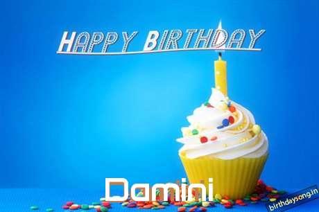 Damini Cakes