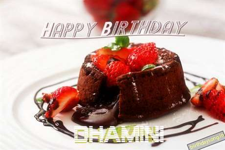 Happy Birthday Dhamini