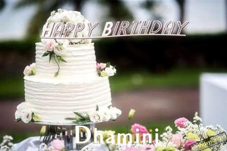 Dhamini Birthday Celebration