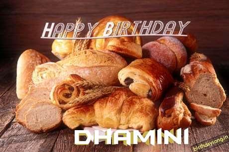 Happy Birthday to You Dhamini