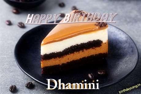 Dhamini Cakes