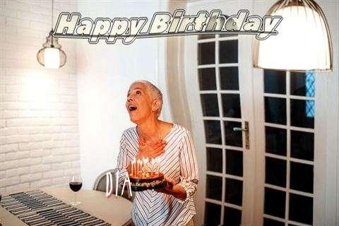 Dia Birthday Celebration