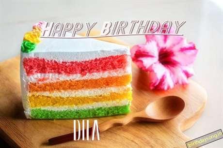 Happy Birthday Dila Cake Image