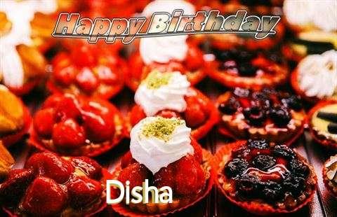 Disha Birthday Celebration