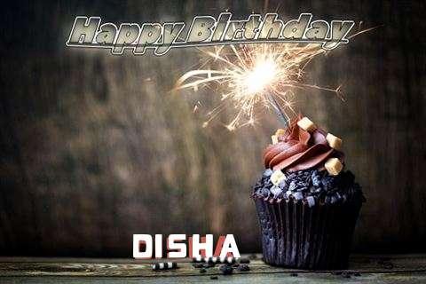 Wish Disha