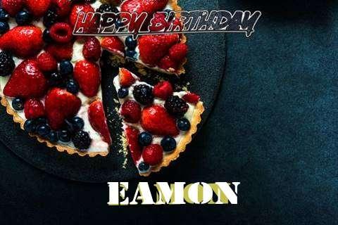 Eamon Birthday Celebration