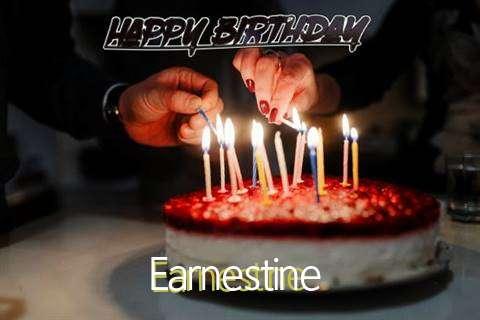 Earnestine Cakes