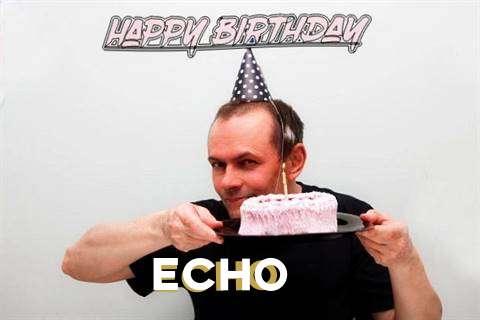 Echo Cakes