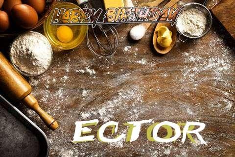 Ector Cakes