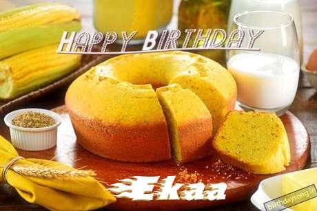 Ekaa Birthday Celebration
