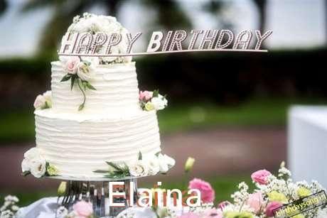 Elaina Birthday Celebration