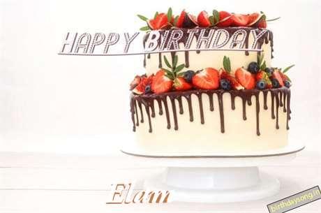 Wish Elam