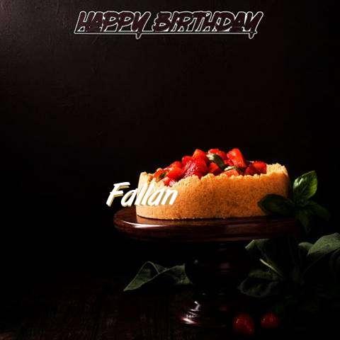 Fallan Birthday Celebration
