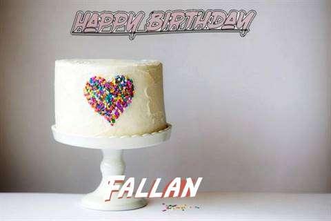 Fallan Cakes
