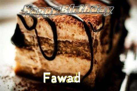 Fawad Birthday Celebration