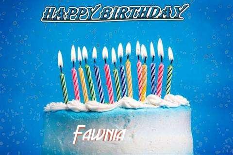 Happy Birthday Cake for Fawnia