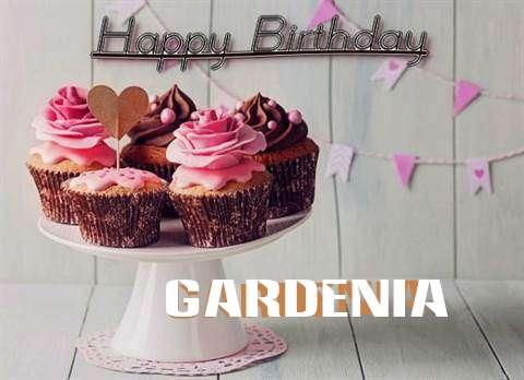 Happy Birthday to You Gardenia