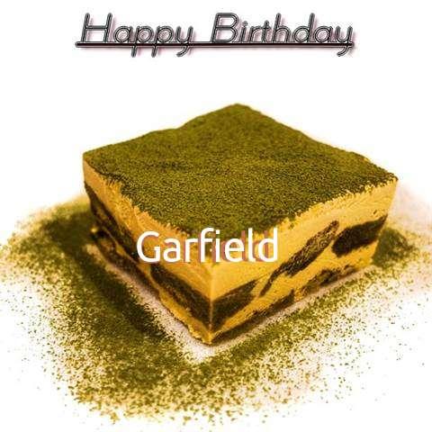Garfield Cakes