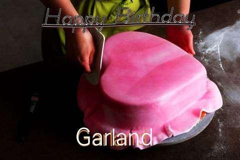 Happy Birthday Cake for Garland