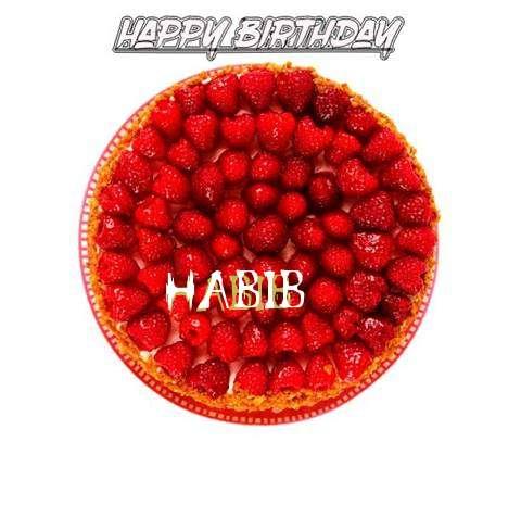 Happy Birthday to You Habib