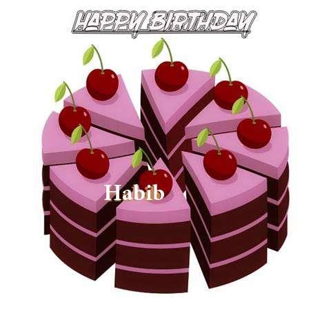 Happy Birthday Cake for Habib