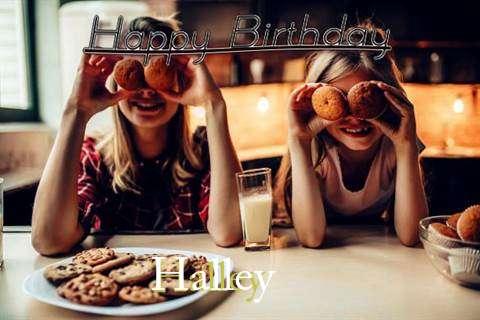 Halley Cakes