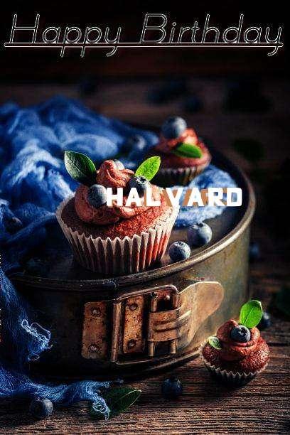 Happy Birthday Halvard