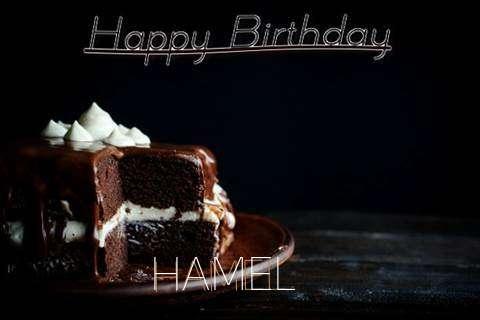 Hamel Cakes