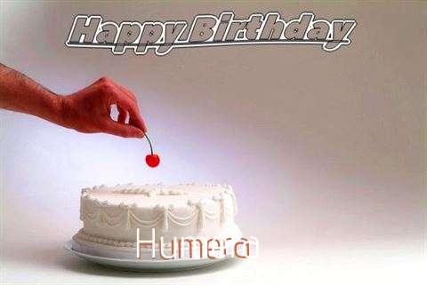 Humera Cakes