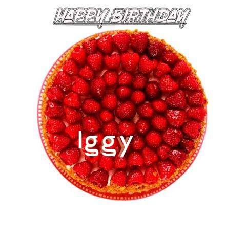 Happy Birthday to You Iggy