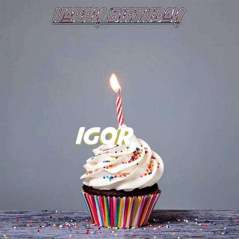 Happy Birthday to You Igor