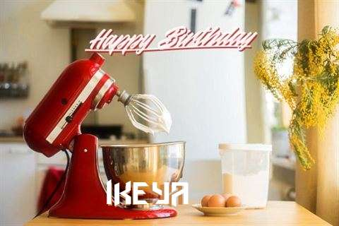 Ikeya Cakes