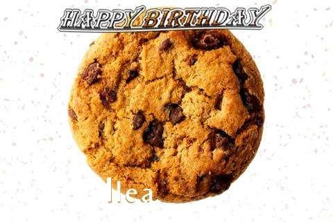 Ilea Birthday Celebration