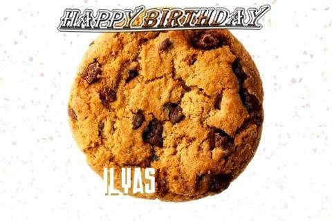 Ilyas Birthday Celebration