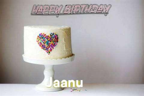 Jaanu Cakes