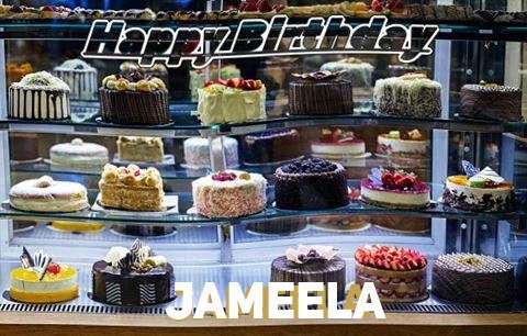 Happy Birthday Jameela Cake Image