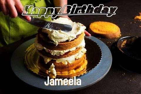 Jameela Birthday Celebration