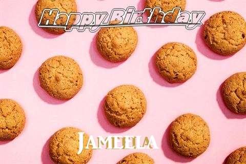 Happy Birthday Wishes for Jameela